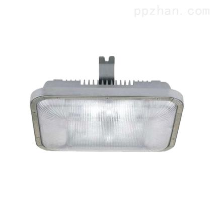 NFC9175长寿顶灯,电厂长寿壁灯价格/厂家