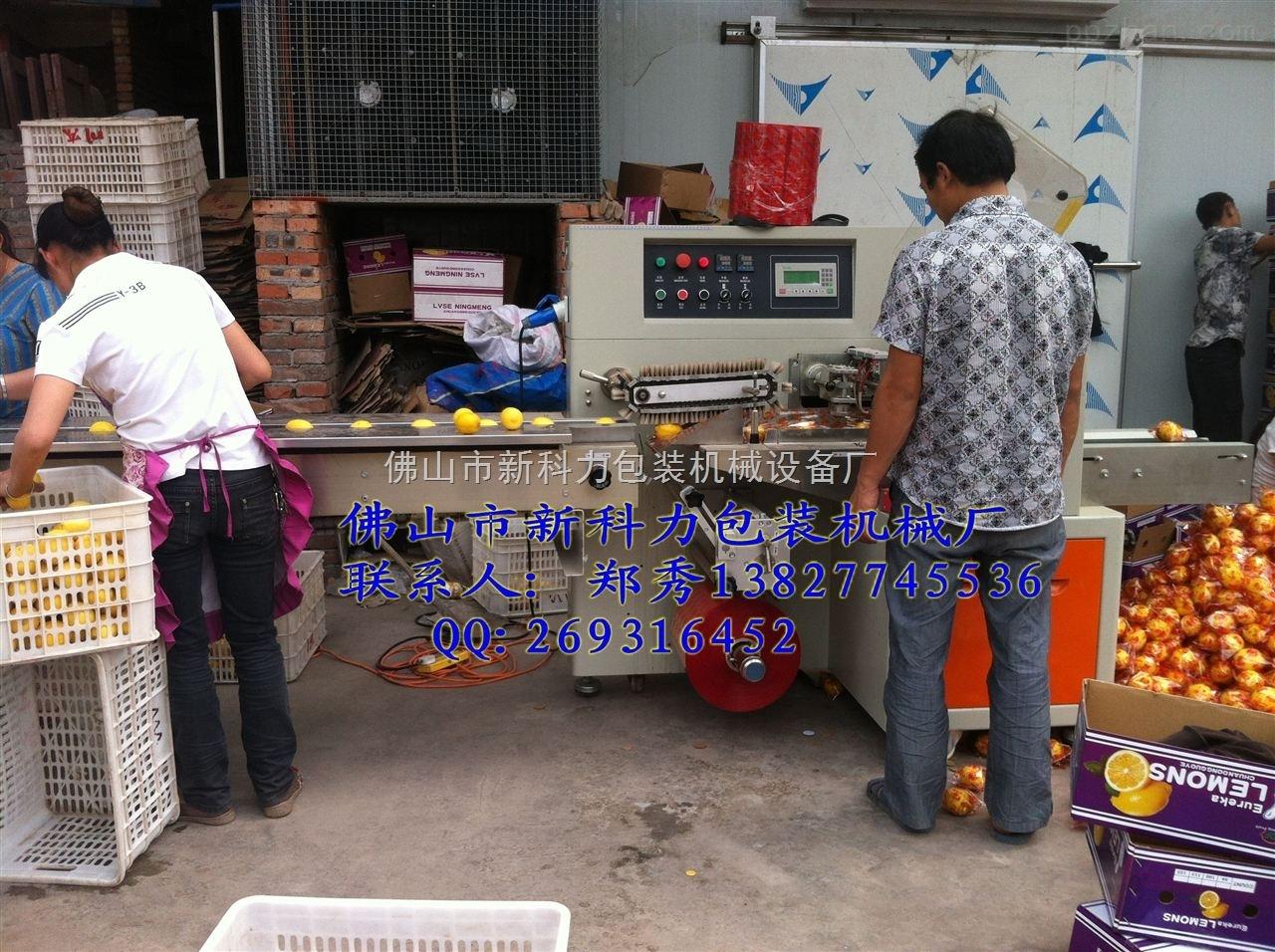 四川全自动柠檬套袋包装机械