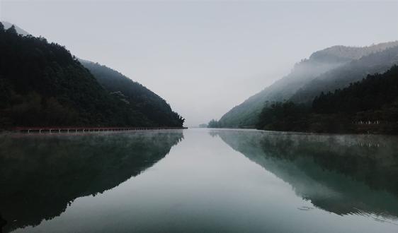 Svetlogorsk纸浆和造纸厂将第一批商品浆运至中国